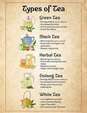 Types of Tea Printable Poster