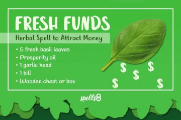 Spell with Basil to Attract Money