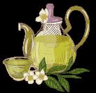 Green tea daily ritual