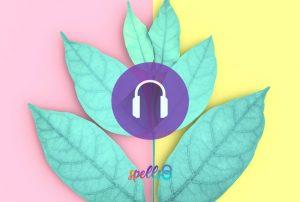 Grounding Mindfulness Meditation Course Online