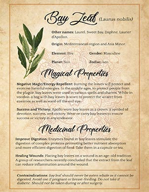 Bay Leaf Magical Uses