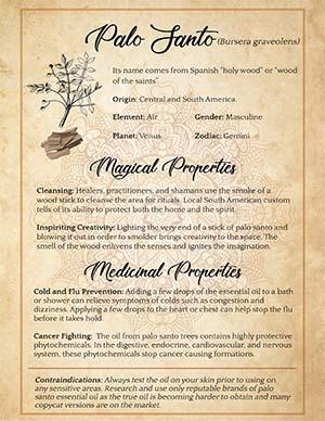 Palo Santo Spiritual Benefits