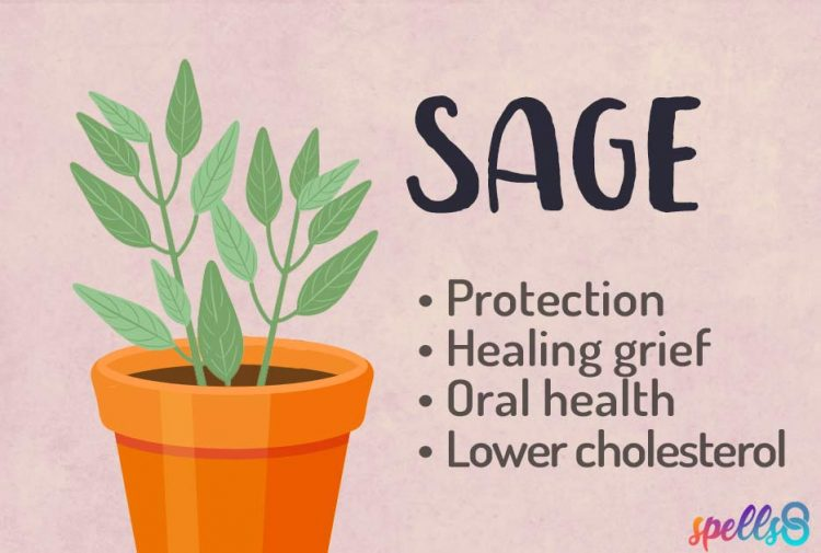 Sage Green Witchcraft Uses