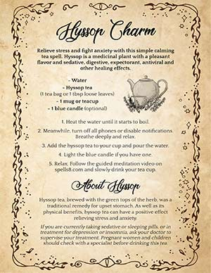Hyssop Charm Tea Spell Anti-stress