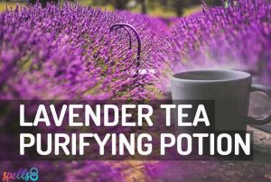 Lavender Tea Purifying Potion