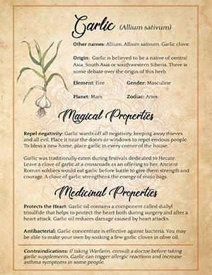 Spiritual uses of Garlic