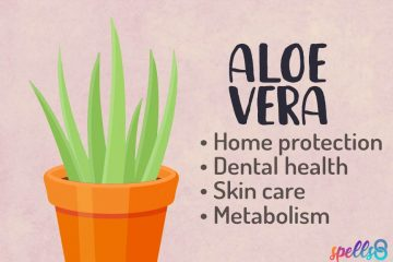 Spiritual Usage of Aloe Vera
