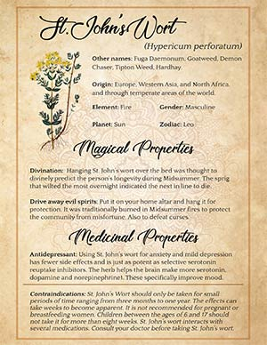 Magical Uses of St Johns Wort