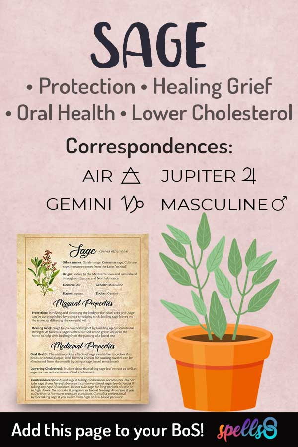 Astrological Correspondences Of Sage