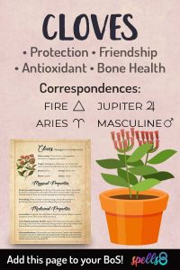 Cloves Magical Correspondences