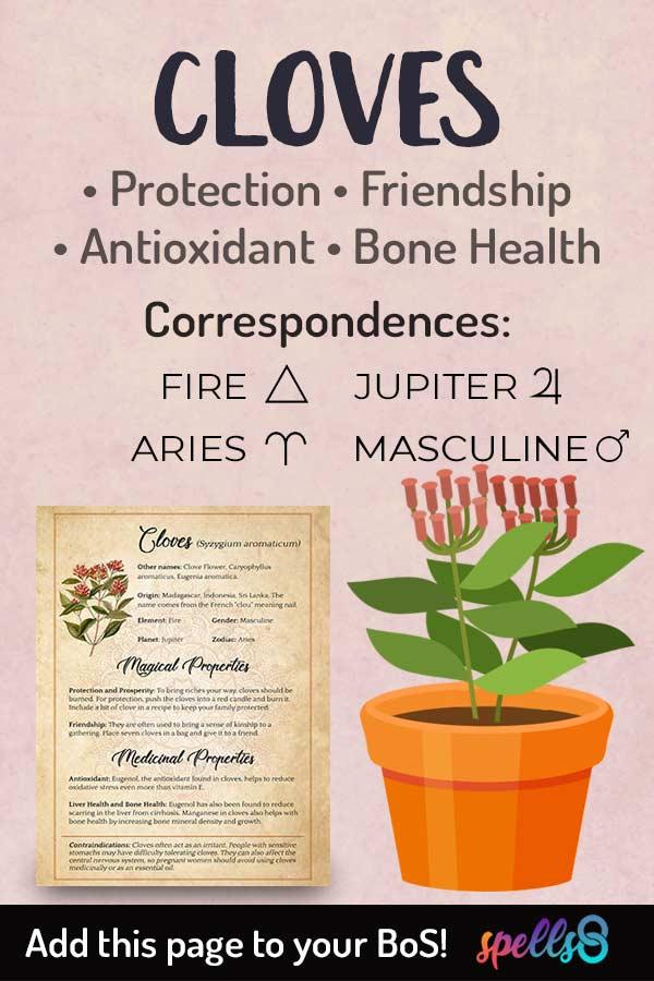 Elemental Correspondences Of Cloves