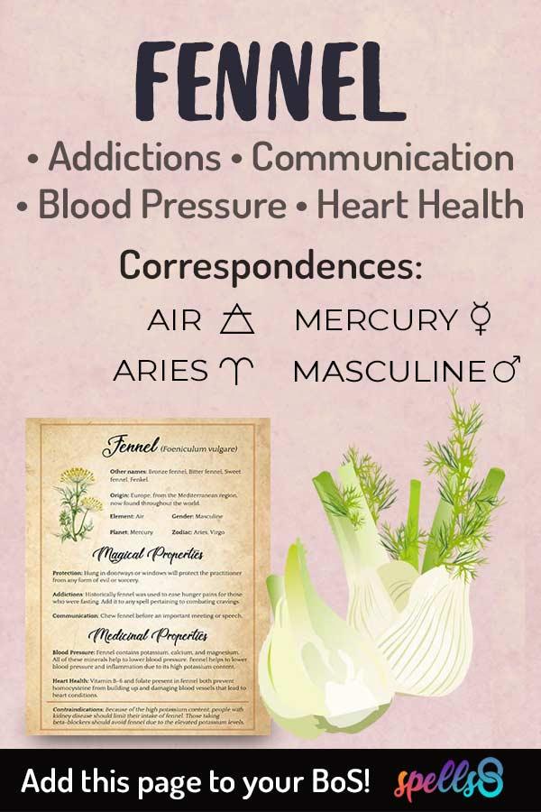 Fennel Correspondences & Witchcraft Uses
