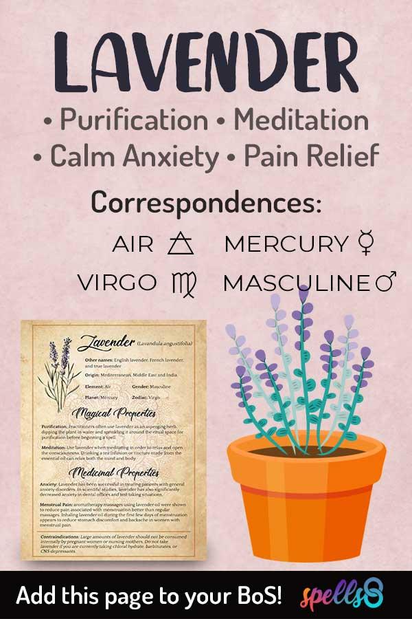 Elemental Correspondences Of Lavender