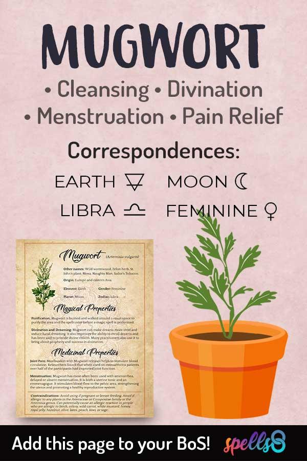 Elemental Correspondences Of Mugwort