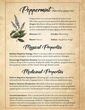 Peppermint Magical Properties