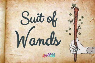 Suit of Wands Tarot