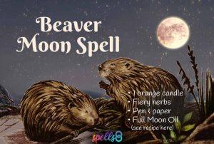 Full Beaver Moon Spell