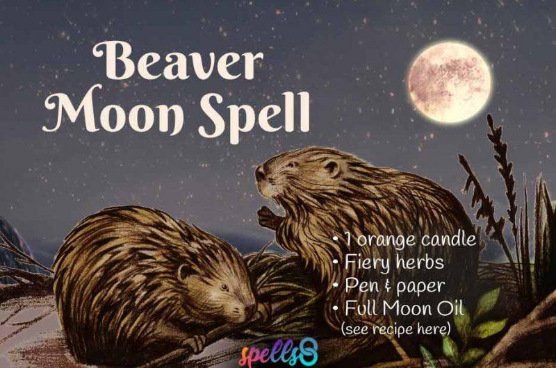 Full Beaver Moon Ritual & Spell