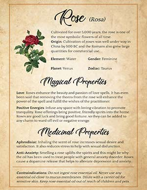 Magical uses of Roses
