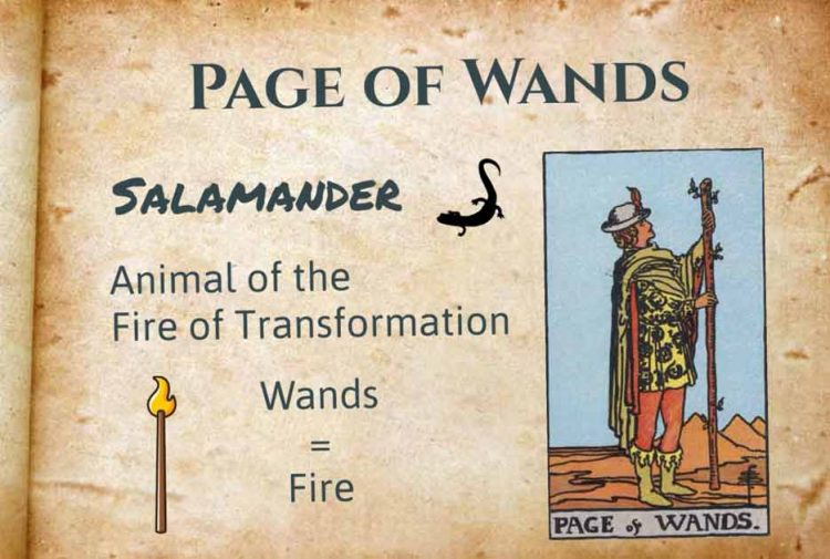 Page of Wands Upright Reversed Meanings