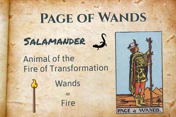 Page of Wands Lesson