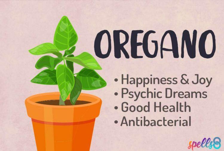 Magical Uses of Oregano