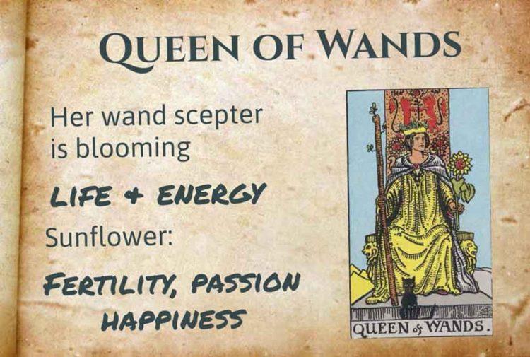 Queen of Wands Tarot meaning