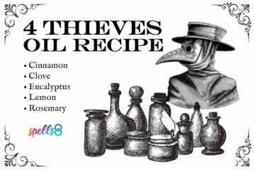 Four Thieves Oil Traditional Recipe