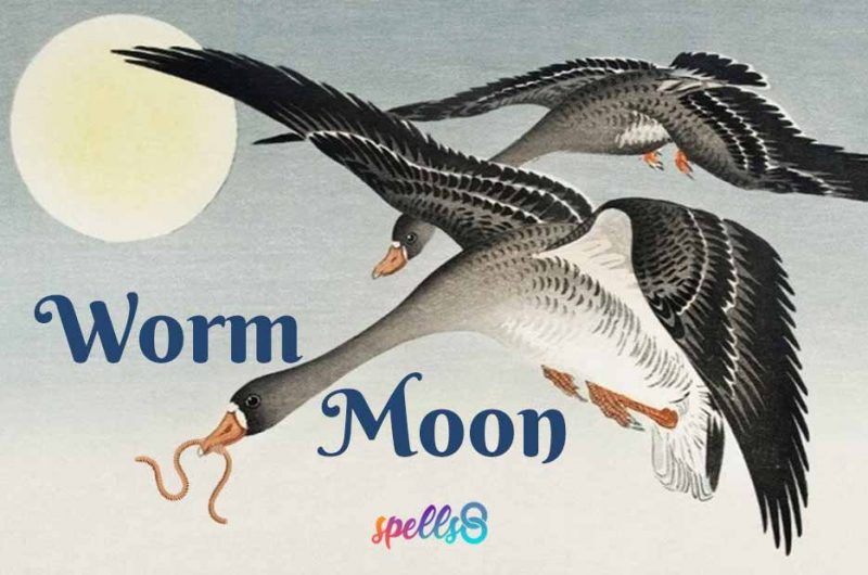 Full Worm Moon: Spell & Ritual (March)