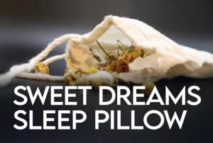 Sleep Dreams Pillow