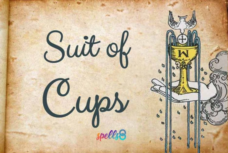 The Suit of Cups