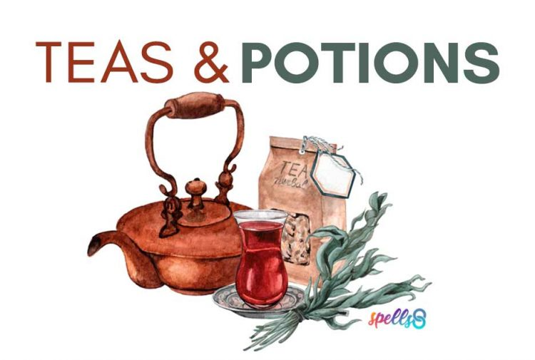 Teas and Potions Witches Apothecary