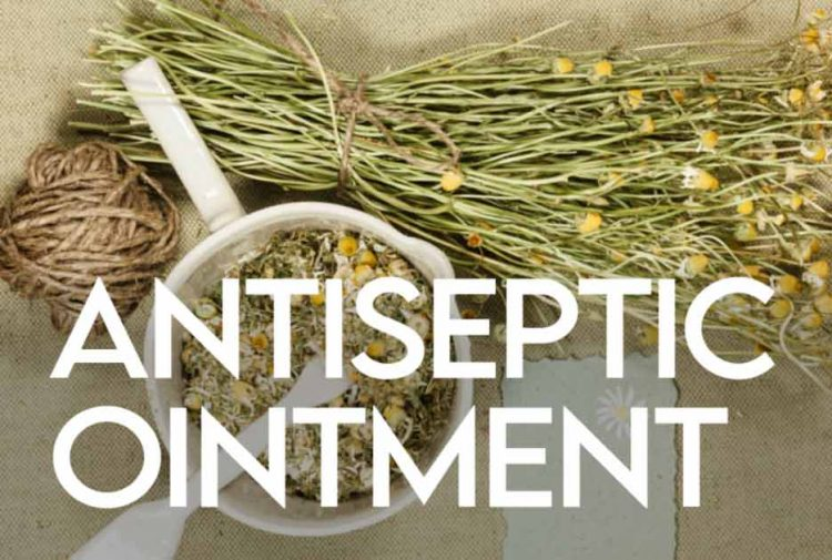 Herbal Antiseptic Ointment Recipe