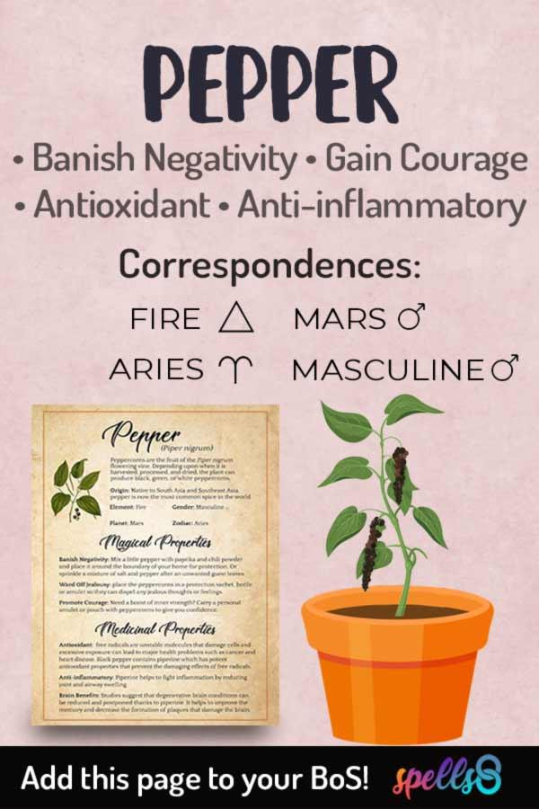 Pepper Correspondences