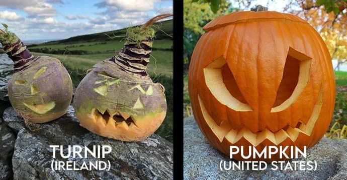Turnip vs Pumpkin